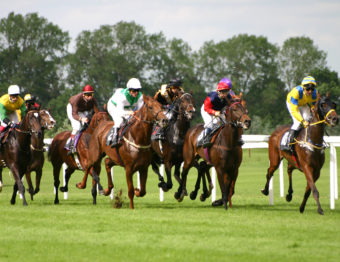 Building Your Own Horse Racing Place Longshot